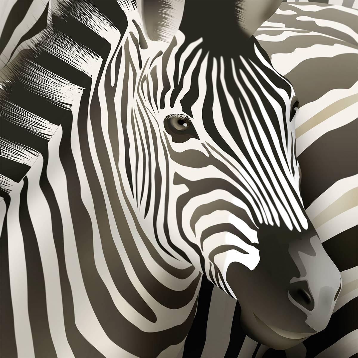 Zebra-ausschnitt
